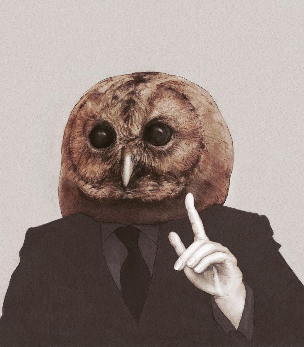 Owl Athena 02